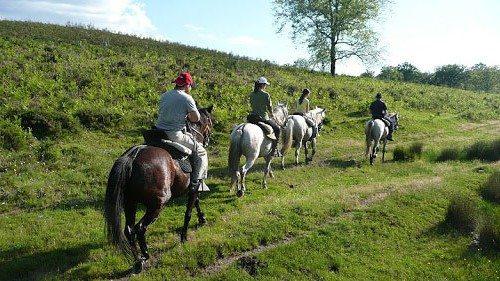 rutas a caballo Gijón actividad